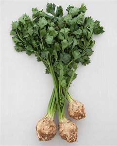 Celery Root Recipes Martha Stewart