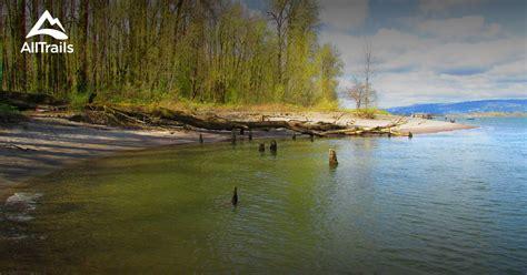 trails  sauvie island wildlife area oregon