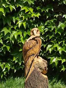 Schnitzerei Mit Der Kettensge Eule Adler
