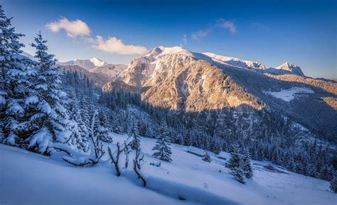 Nature, Landscape, Winter, Snow, Mountain, Forest, Sunset