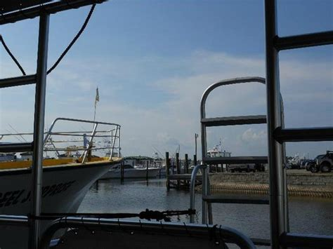 Glass Bottom Boat Tours Alabama by Before We Left The Dock Picture Of Glass Bottom Dolphin