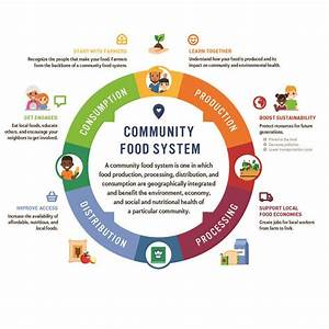 Adopting A Food Systems Approach  A Case Study Of Just