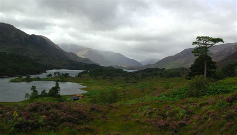 Free Easter Background Pictures Battle Of Glen Affric Wikipedia