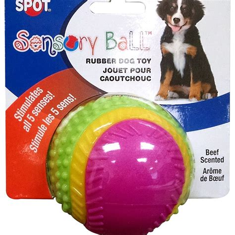toys for blind dogs best toys for blind dogs reviews and buyer s guide in