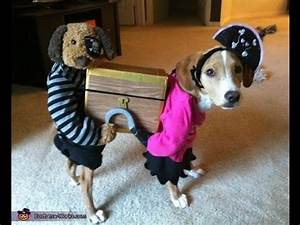Dog wearing funny costumes - funny video compilation cat ...