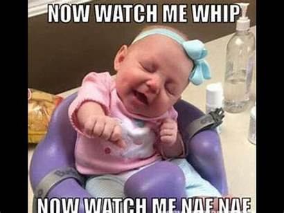 Memes Funny Jokes Laughing Kid Babies Hilarious