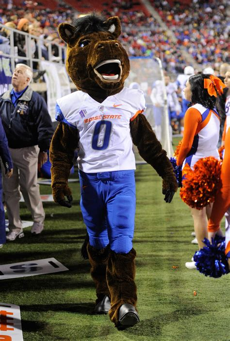 buster bronco buster bronco  boise state  unlv