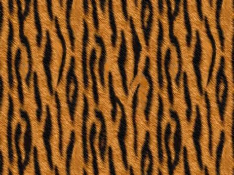 Animal Pattern Wallpaper - animal print backgrounds free animal print patterns and