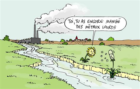 pollution des nappes phreatiques 28 images ii les effets n 233 fastes des engrais sur l
