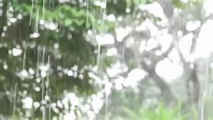 Vuelos baratos, Costa Rica YouTube