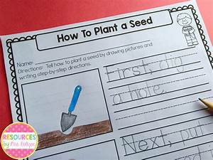 Planting Seeds Writing Freebie Resources By Mrs Roltgen