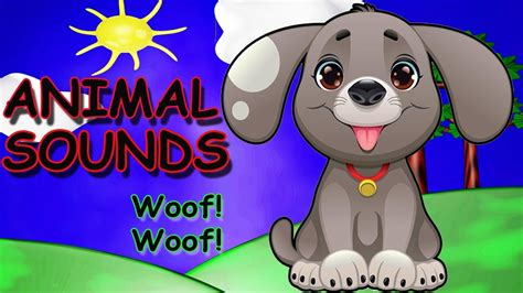 animal sounds song animal sounds song  children