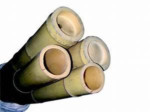 Baton De Bambou : b tons de bambou ~ Premium-room.com Idées de Décoration