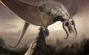 Dragon - HD Wallpapers