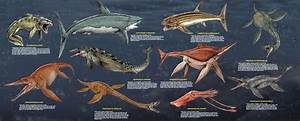 Large Prehistoric Sea Monsters