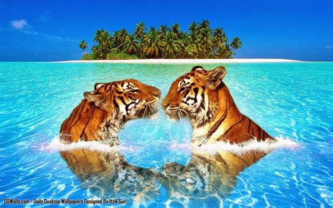original animal hd wall papers atozcinegallery