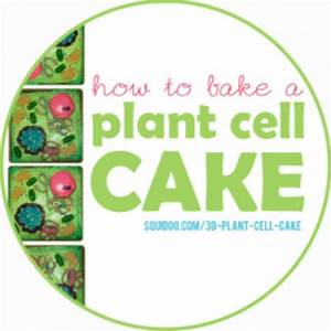 3d Plant Cell Cakes