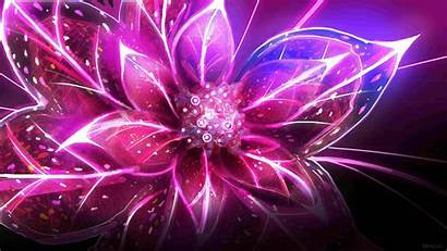 Cool Flower Wallpapers Definition Wallpapertag Popular