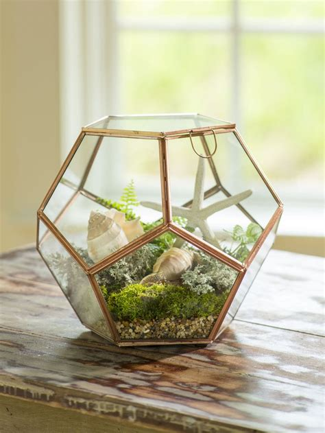 globe tabletop terrarium glass terrarium plant