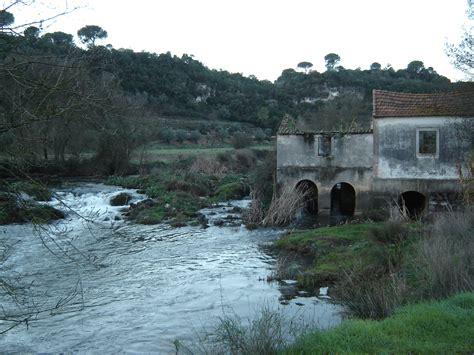 alviela river pollution  tanning industry