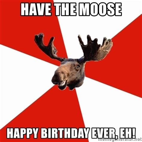 Canadian Moose Meme - have the moose happy birthday ever eh stereotypical canadian moose meme generator