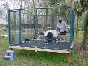 dog kennel flooring ideas quotes
