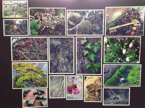 gcse photography secret garden project  croal  deviantart