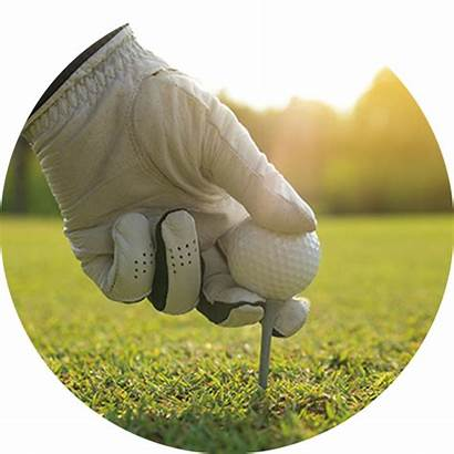 Golf Qed Course Simulator Software Succeed Ignite