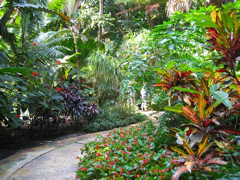 botanical gardens florida sunken gardens florida hikes
