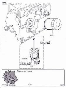Oil Pump And Filter   Canley Classics