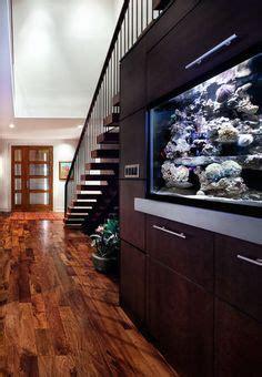 mejores imagenes de awesome aquariums en  peceras acuario  peceras en casa