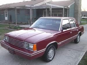 AriesKkid 1983 Dodge Aries Specs, Photos, Modification