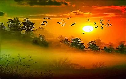 Morning Sun Wallpapers Background Backgrounds Wishes Desktop