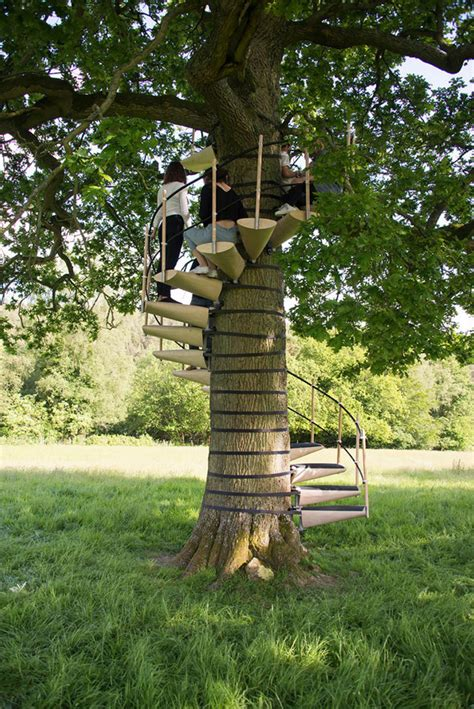 spiral staircase  attaches  trees