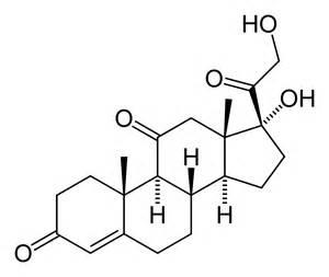 Cortisone Cortisone
