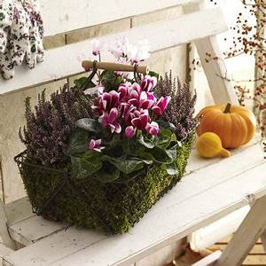 Herbstdeko Selbst Gemacht : 50 kreative ideen f r gem tliche herbstdeko zum selbermachen ~ Orissabook.com Haus und Dekorationen