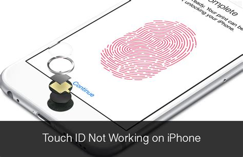 iphone touch id touch id not working on iphone 6 6 plus here is how to fix it