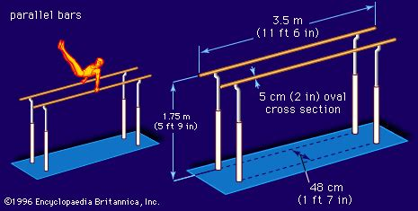 Bar Dimensions by Parallel Bars Sports Britannica