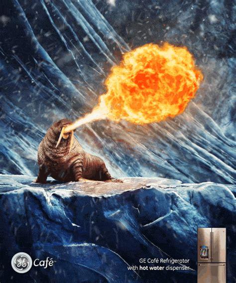 penguins polar bears  walruses breathing fire  ge fridges appliance retailer