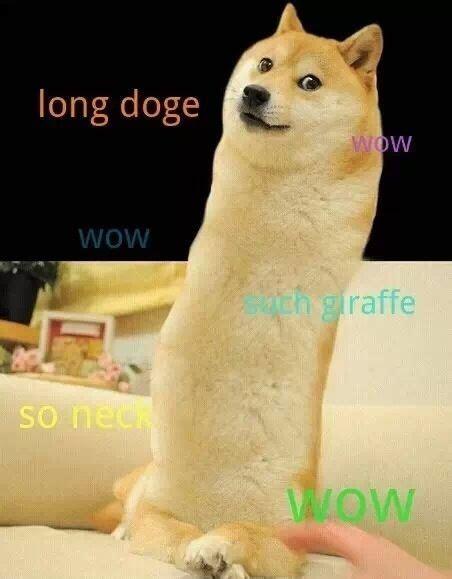 Doge Memes Funny