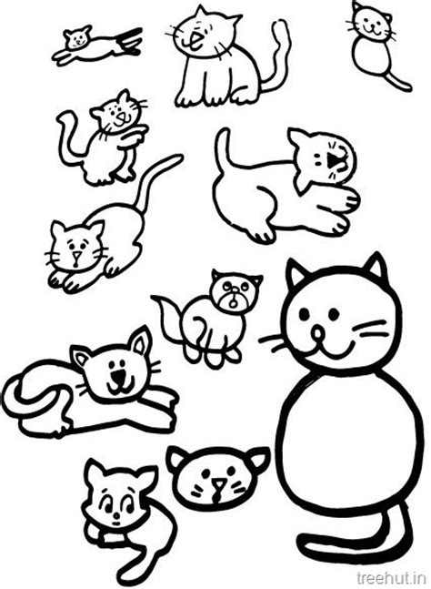 cat drawing  coloring pages  kids