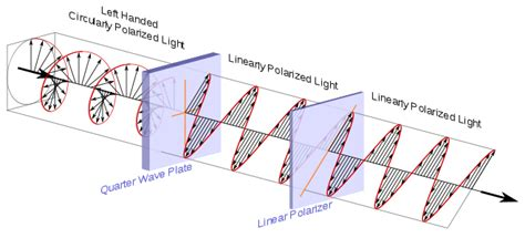 Circularly Polarized Light by Polarized 3d Glasses