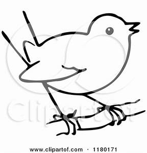 Bird Sketch Clipart