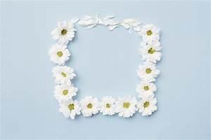 White flower forming square frame on plain background ...