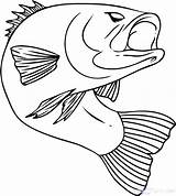 Fish Coloring Funny Pages Getcolorings sketch template