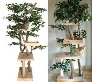 diy cat tree diy cat tree using real tree www imgkid the image