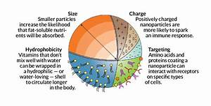 Nanoparticle Diagram On Realeverything