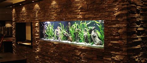 Aquarium An Der Wand by Aquarium In Wand Aquarium In Wand Innenarchitektur Und M