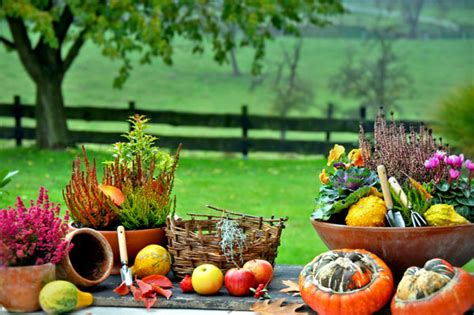 Garten Auch Im Herbst by Gartentipps F 252 R Den Goldenen Herbst Garten