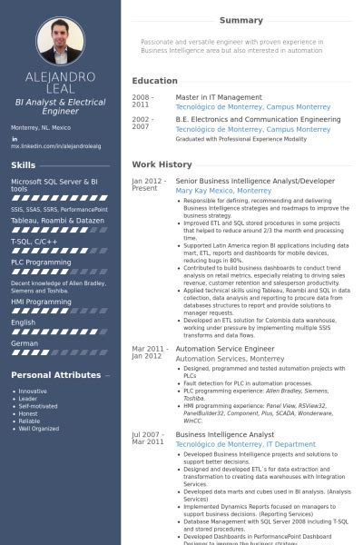 Bi Developer Resume Indeed by Analyste De Business Intelligence Exemple De Cv Base De Donn 233 Es Des Cv De Visualcv
